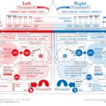 Derechas e izquierdas